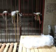 hong kong mops
