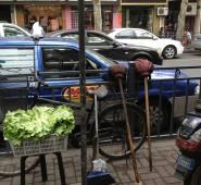 veggie mops